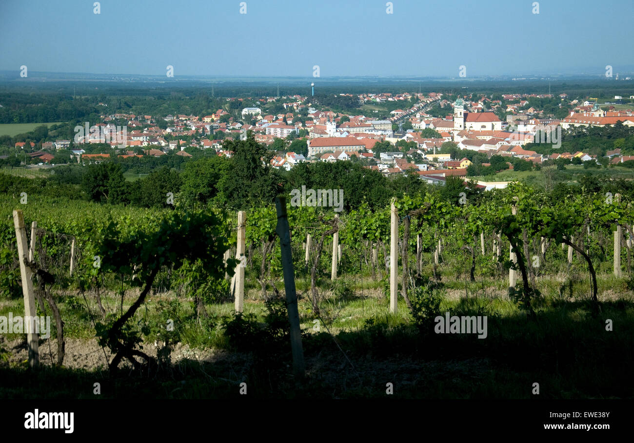 Valtice, Czech Republic town renowned for wines, viewed beyond a hilltop vineyard - Stock Image