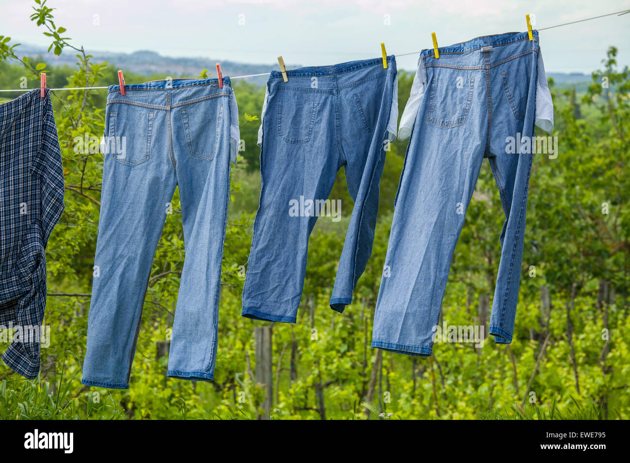 Blue jeans on a clothesline to dry - Stock Image