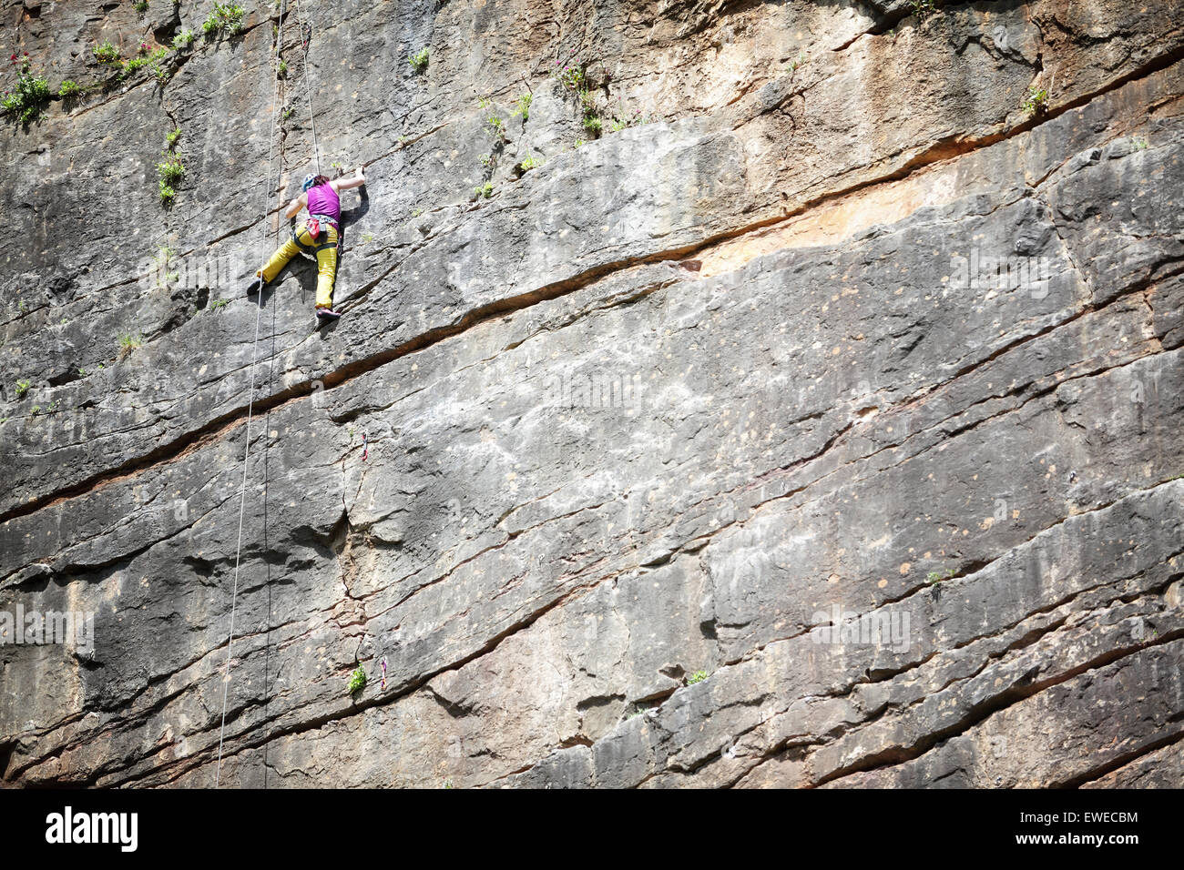 Rock climber stretching for hold on vertical climb with copy space - Stock Image