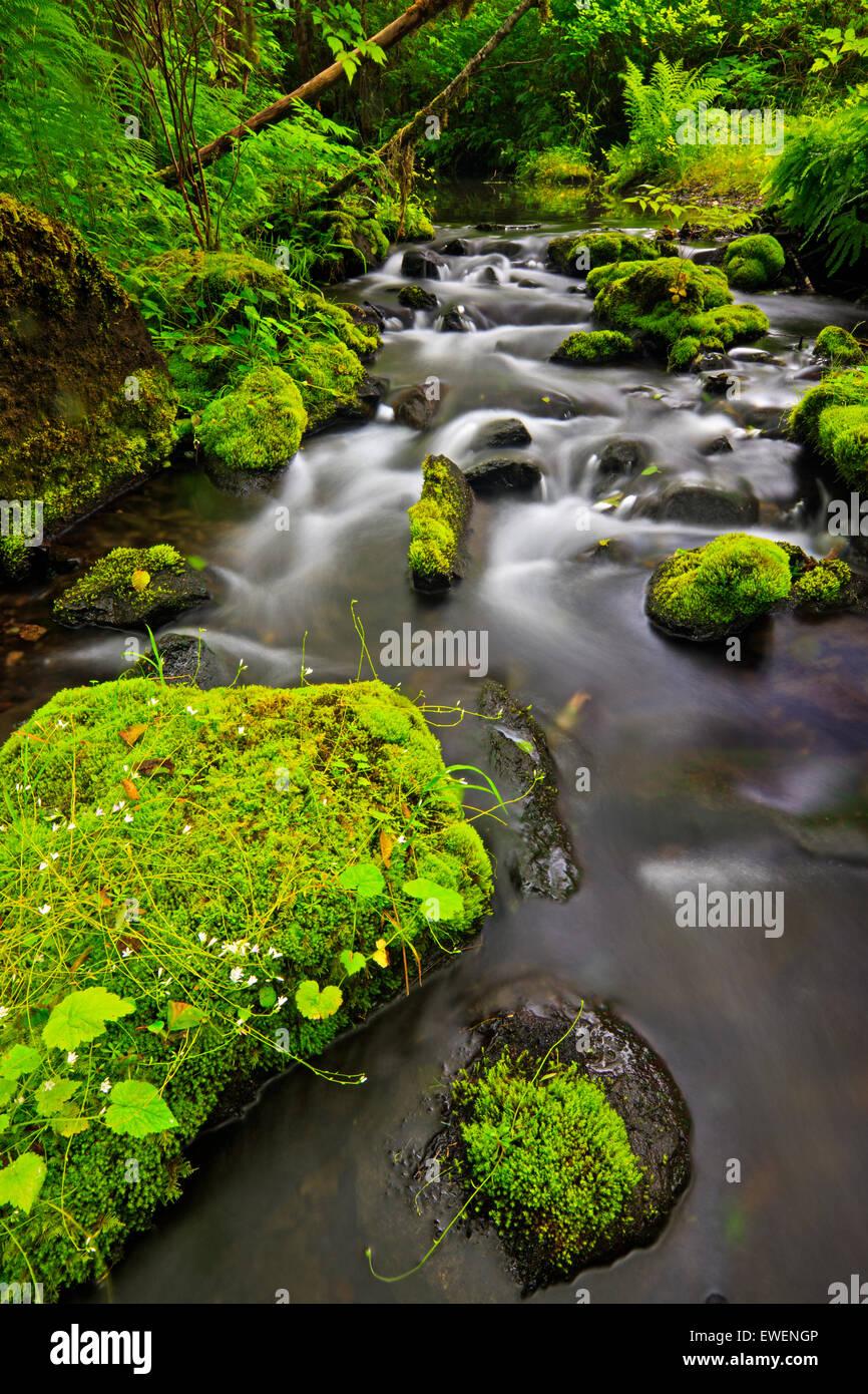 Water Photograph Stock Photos & Water Photograph Stock