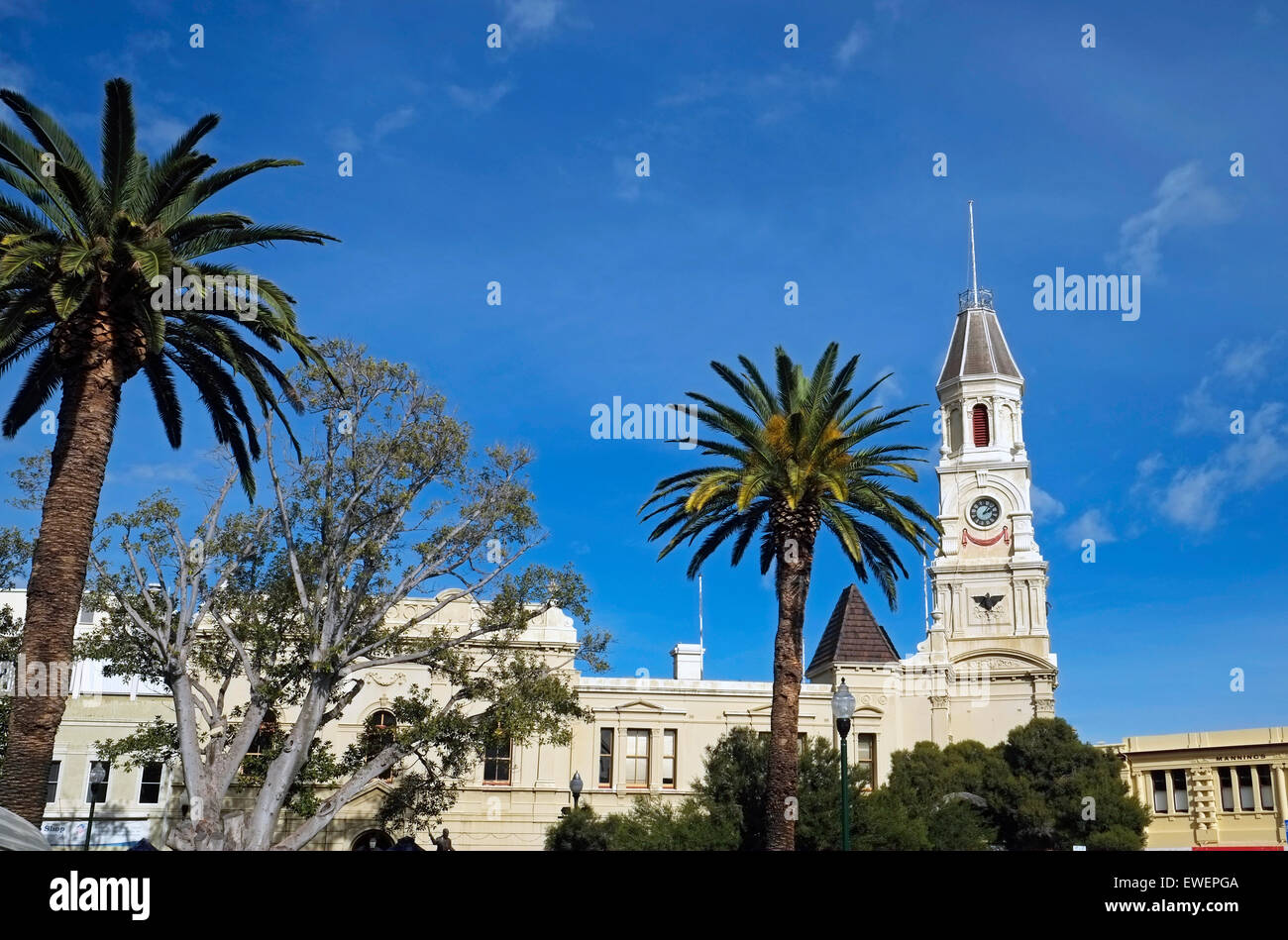 View of Fremantle Town Hall Perth Western Australia - Stock Image