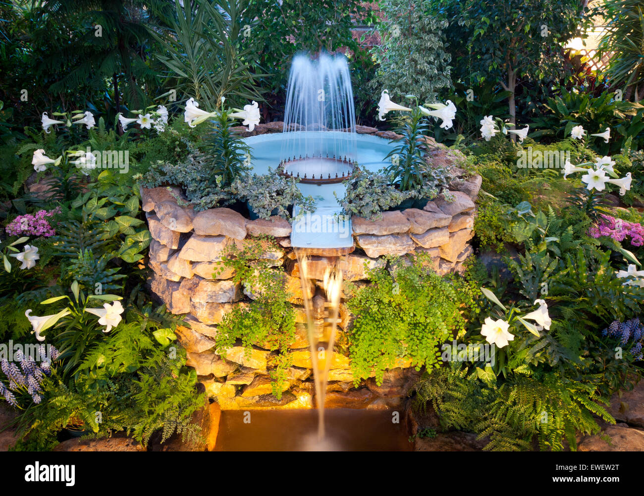 A view of the fountain, flowers and greenery at the Saskatoon Civic Conservatory in Saskatoon, Saskatchewan, Canada. - Stock Image