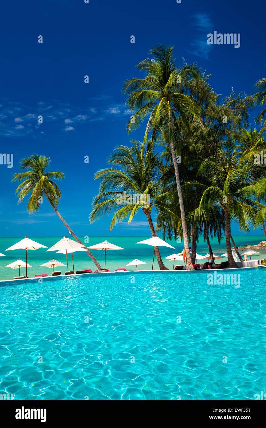 Large infinity swimming pool on the beach with palm trees and umbrellas - Stock Image