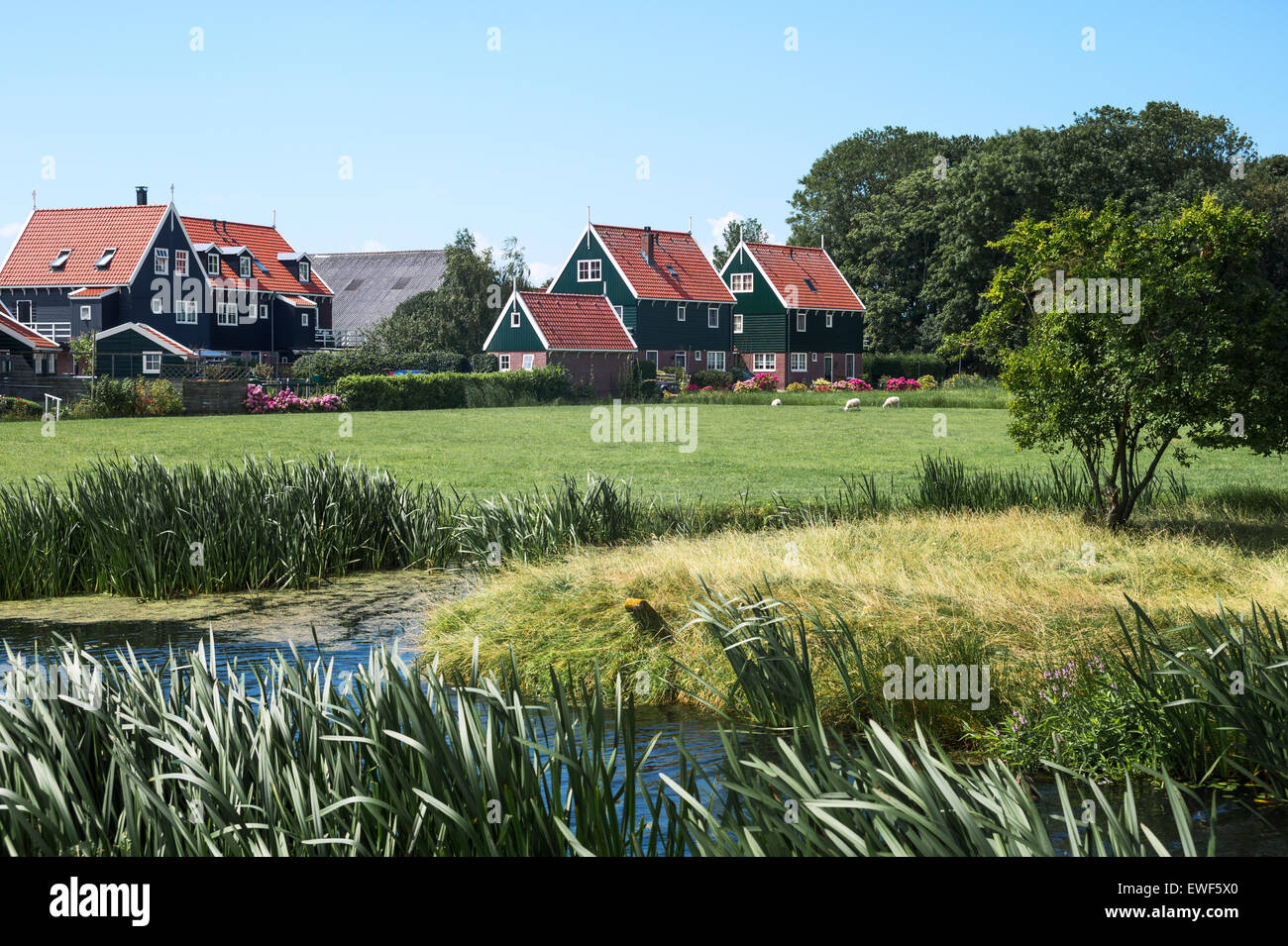 Amsterdam, Waterland district, Marken, typical country houses near the village. - Stock Image