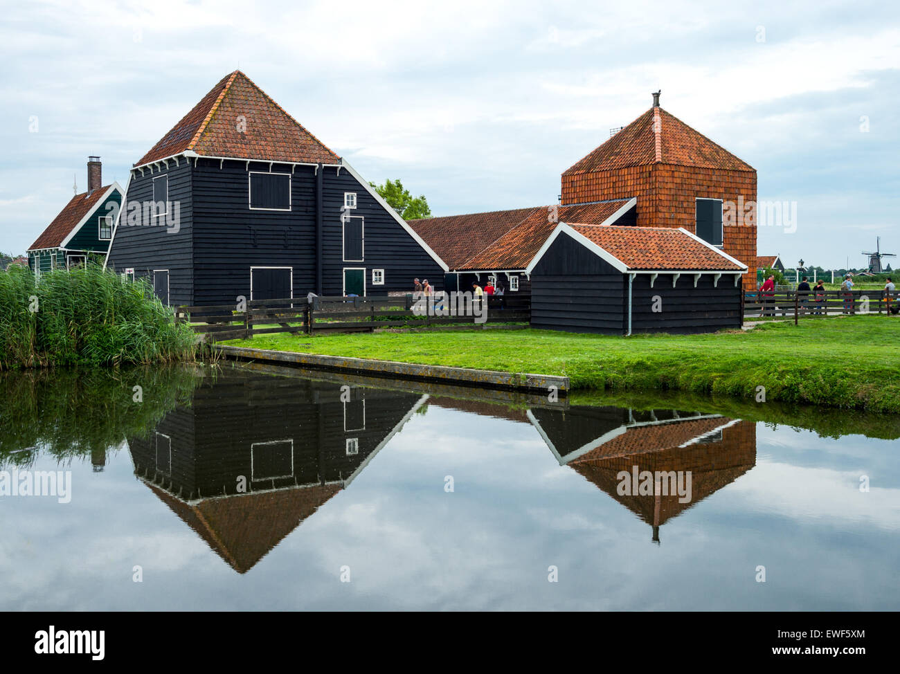 Amsterdam, Waterland district, Zaandam, typical country houses - Stock Image