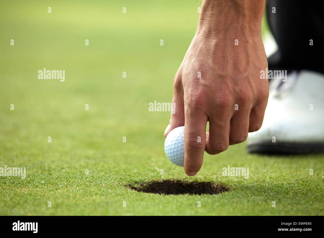 Person holding golf ball, close-up - Stock Image
