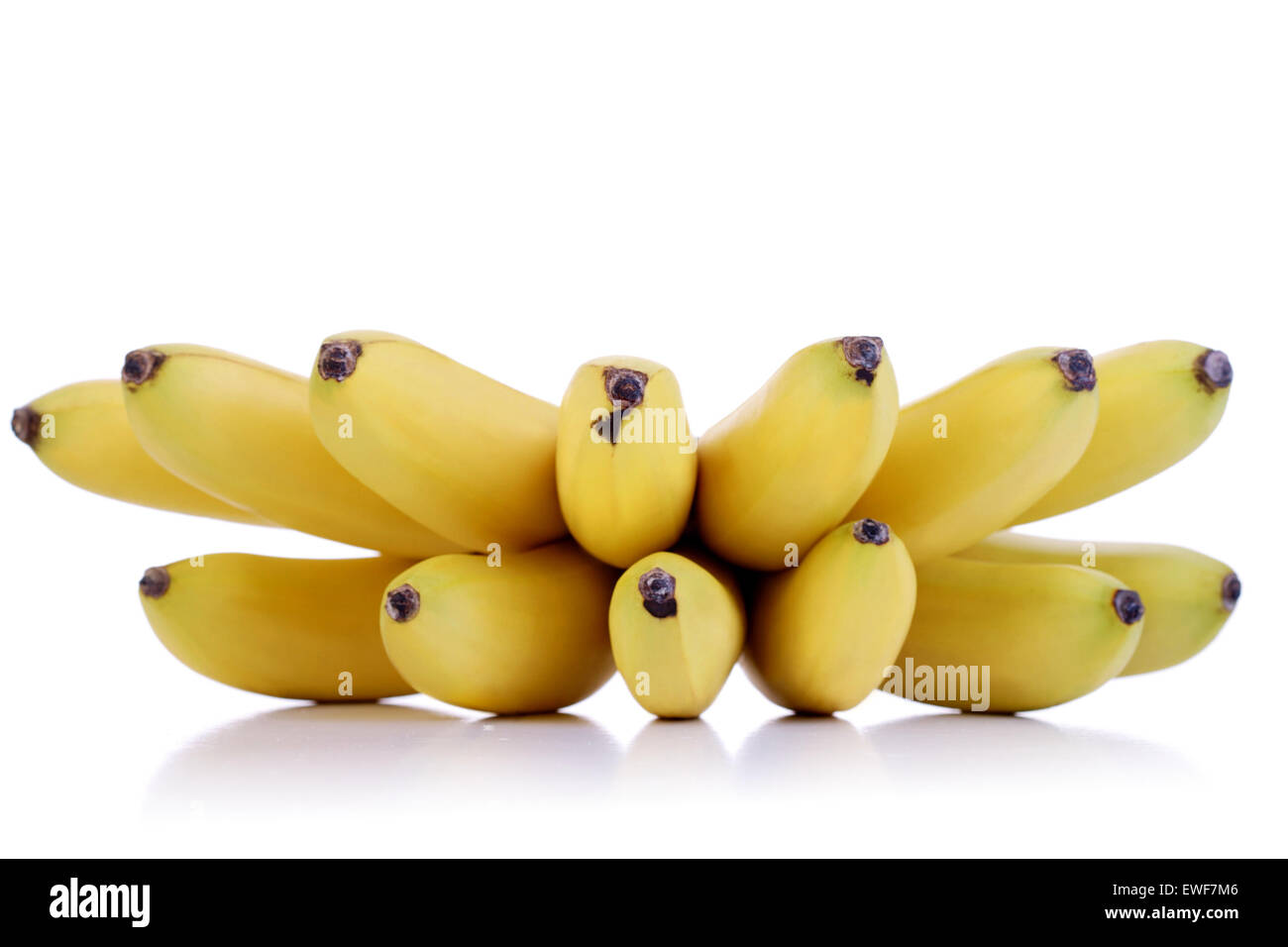 studio shot of small bananas stock photo: 84543206 - alamy