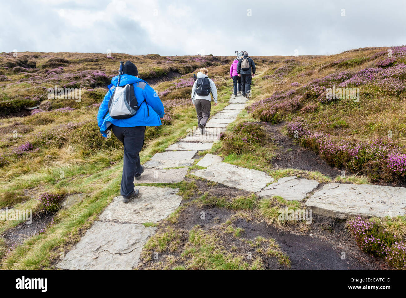 Walkers on a stone flag footpath, Kinder Scout, Derbyshire, Peak District, England, UK - Stock Image