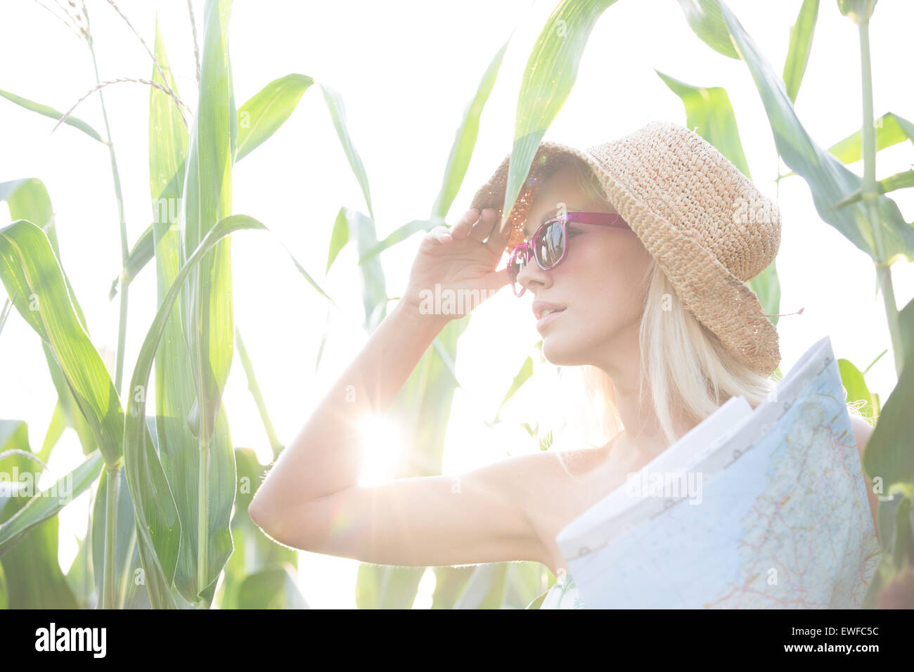 Woman looking away while holding map amidst plants on sunny day - Stock Image