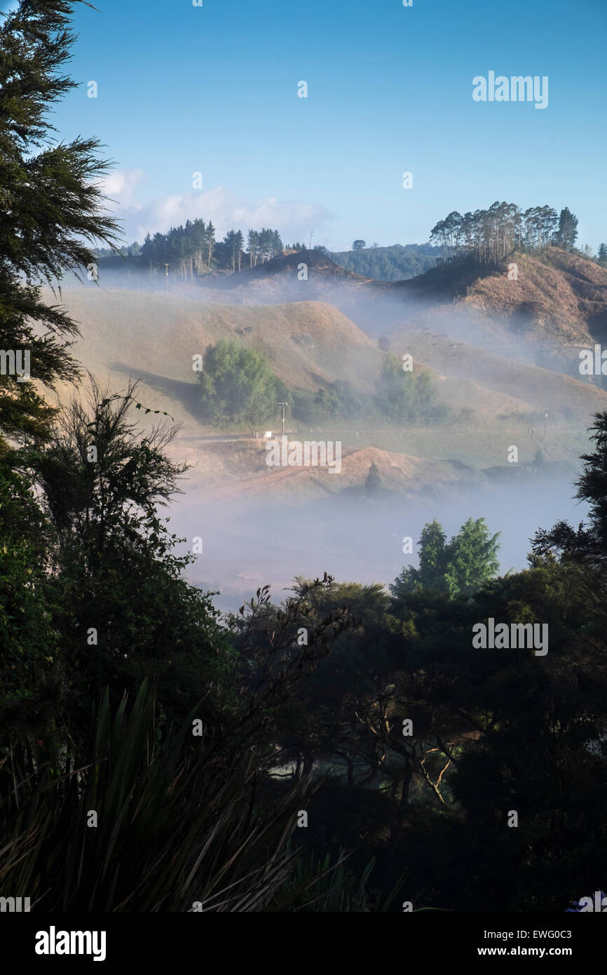 Early morning mist in the valleys between the hills on the outskirts of Waitomo, New Zealand. - Stock Image