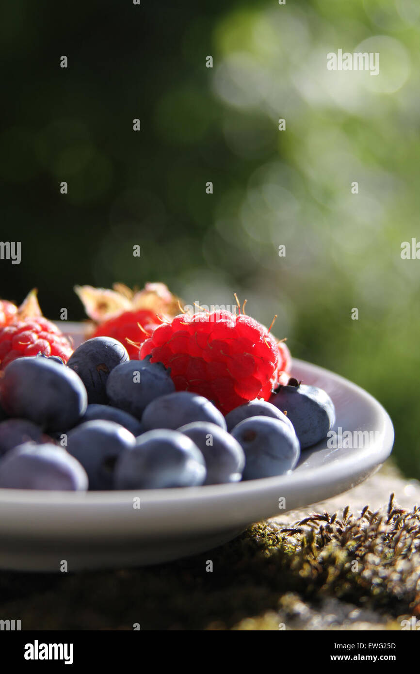 Boot Water puddle Blueberries Bowl Nourishment Nutrition Still Life closeup food fruit macro raspberries - Stock Image