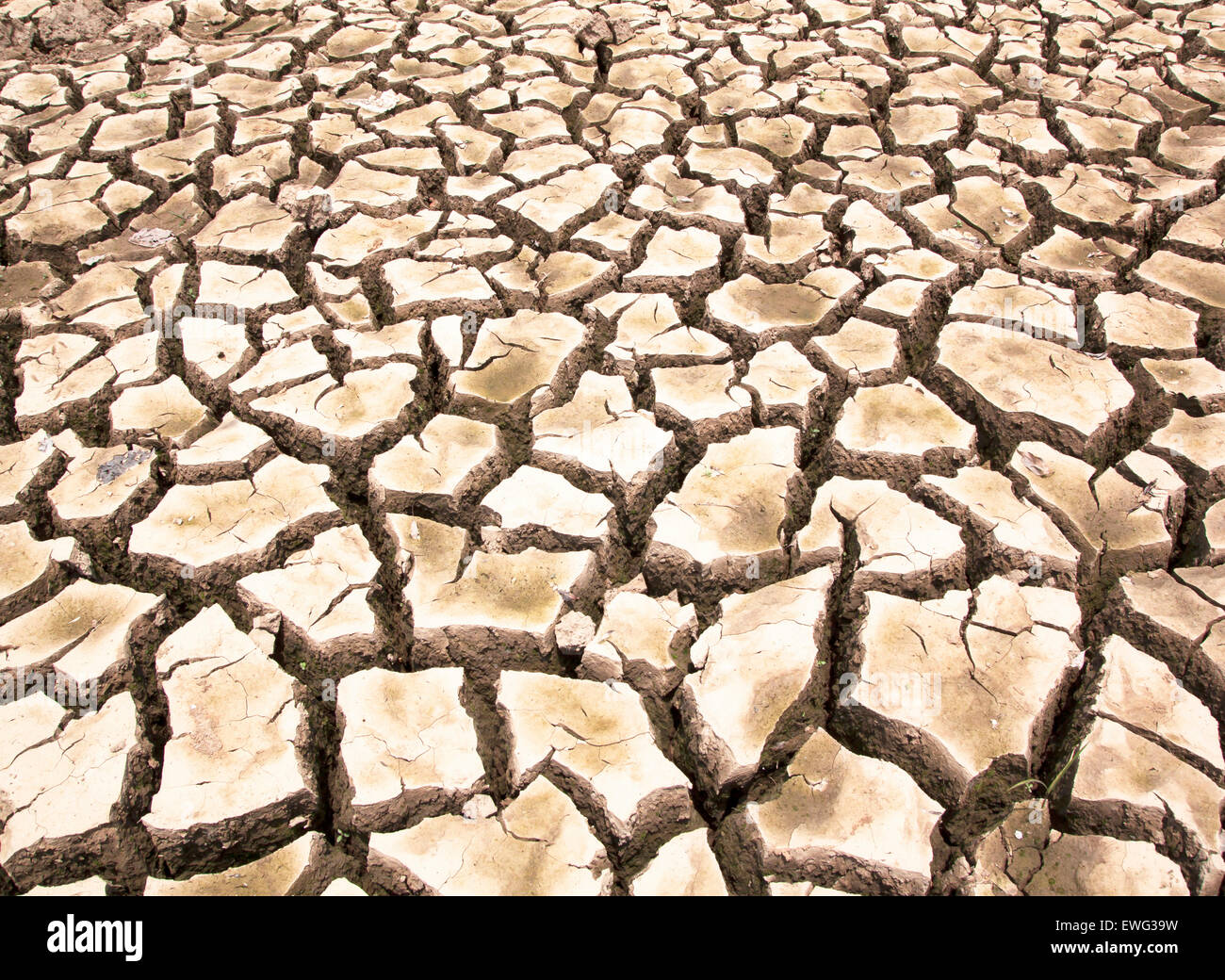 Drought-parched soil, natural abstract background texture. - Stock Image