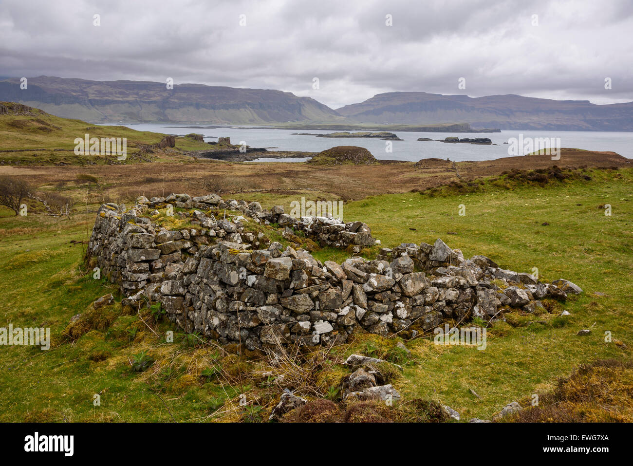 Ruin of crofters cottage said to be home to David Livingstons grandparents, Isle of Ulva, Hebrides, Argyll and Bute, - Stock Image