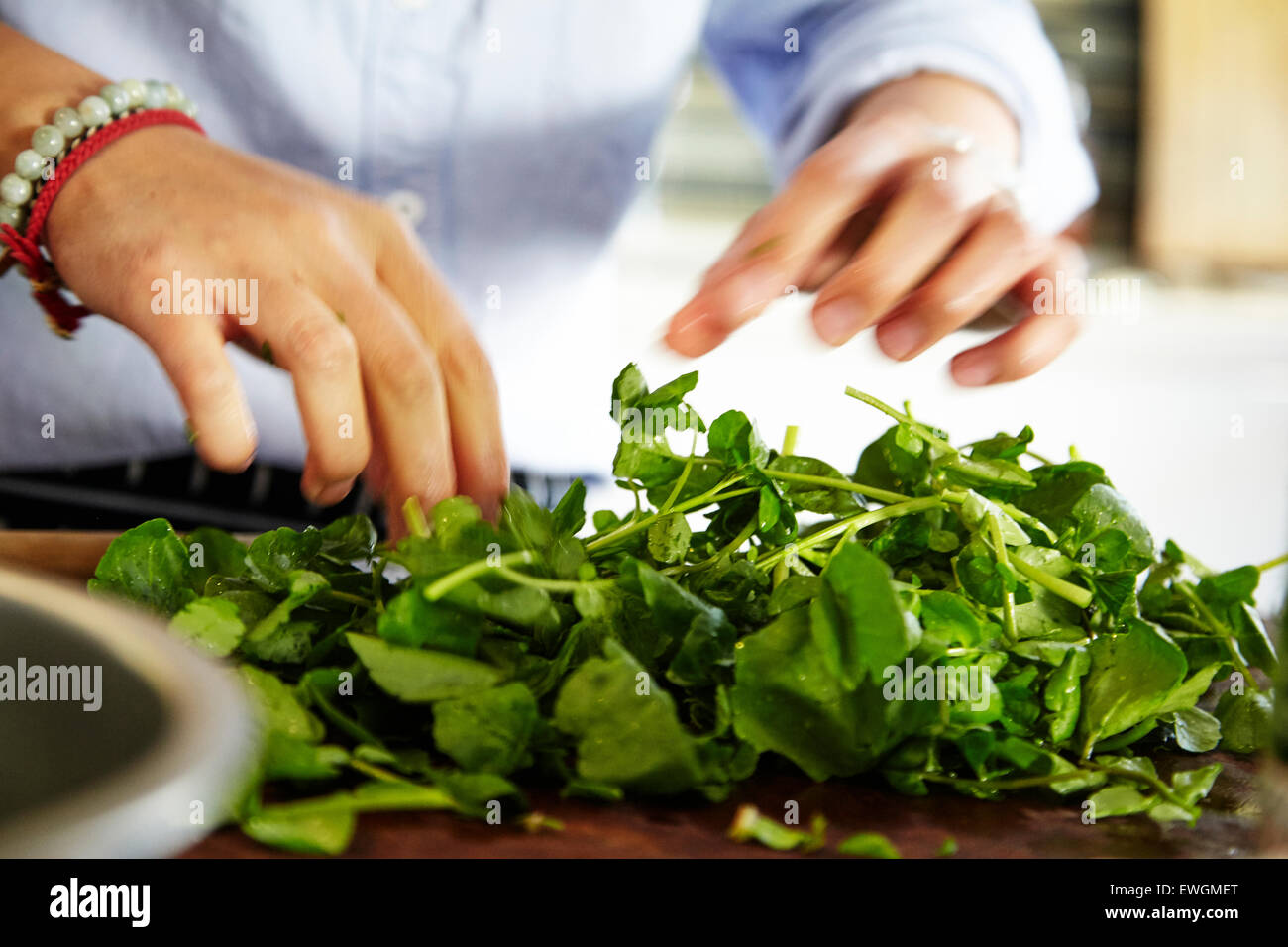 mixed green salad on a wooden cutting board - Stock Image