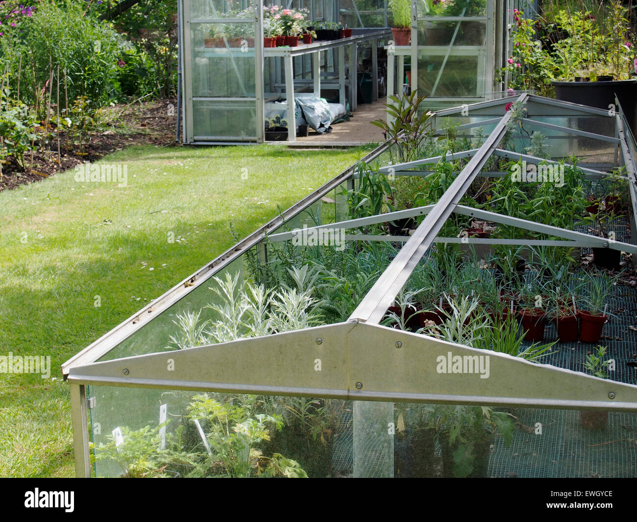 a large aluminium and glass garden cloche with similar style greenhouse behind in a well maintained - Garden Cloche
