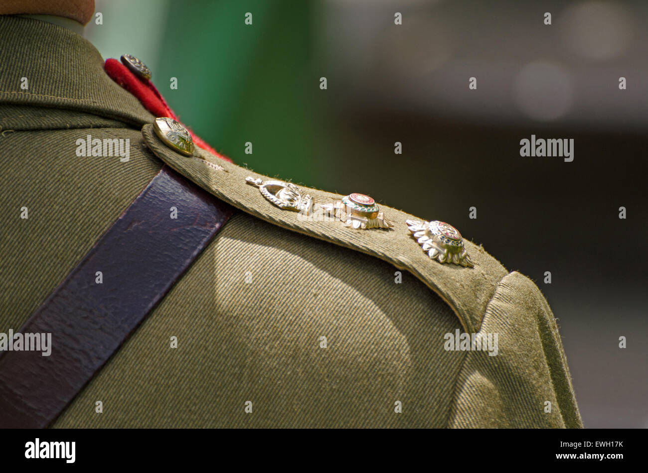 Rear view of the shoulder of a man wearing the uniform of a WW2 British Army Colonel showing pips and crown insignia - Stock Image