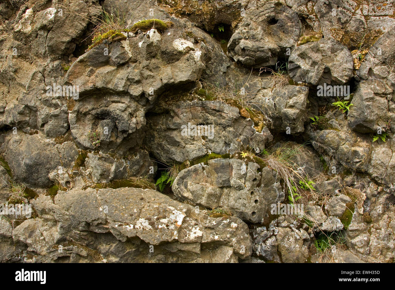 Pillow lava in Iceland - Stock Image