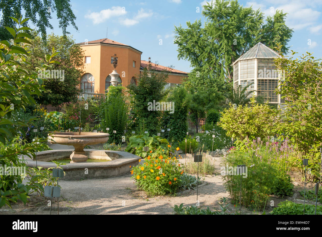 Padua's Orto Botanico, the world's oldest academic botanical garden, with (right) the greenhouse of the - Stock Image