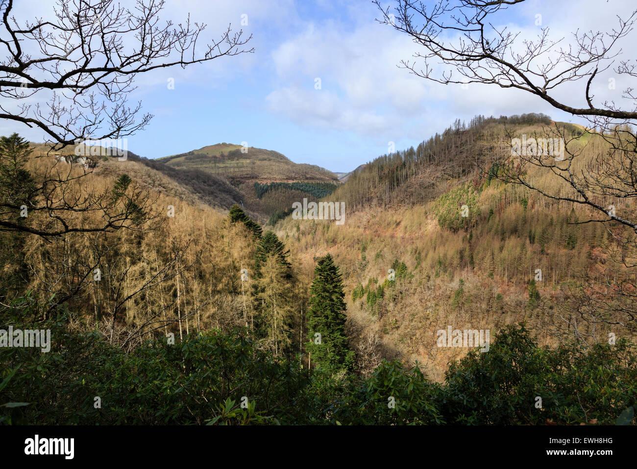 The Rheidol Valley at Devil's Bridge, Ceredigion, Wales - Stock Image