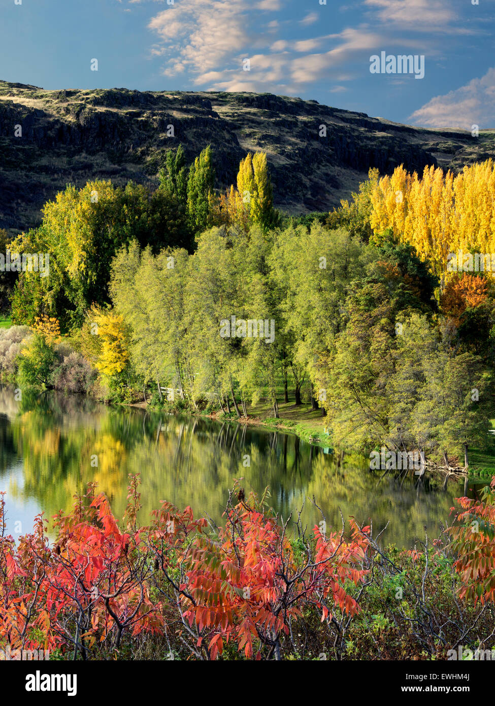 Fall color at Horesthief Lake State Park, Washington. Columbia River Gorge National Scenic Area - Stock Image