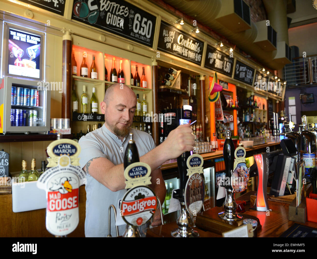 Barman pulling a pint of beer ale at The Castle in Coventry UK Stock Photo