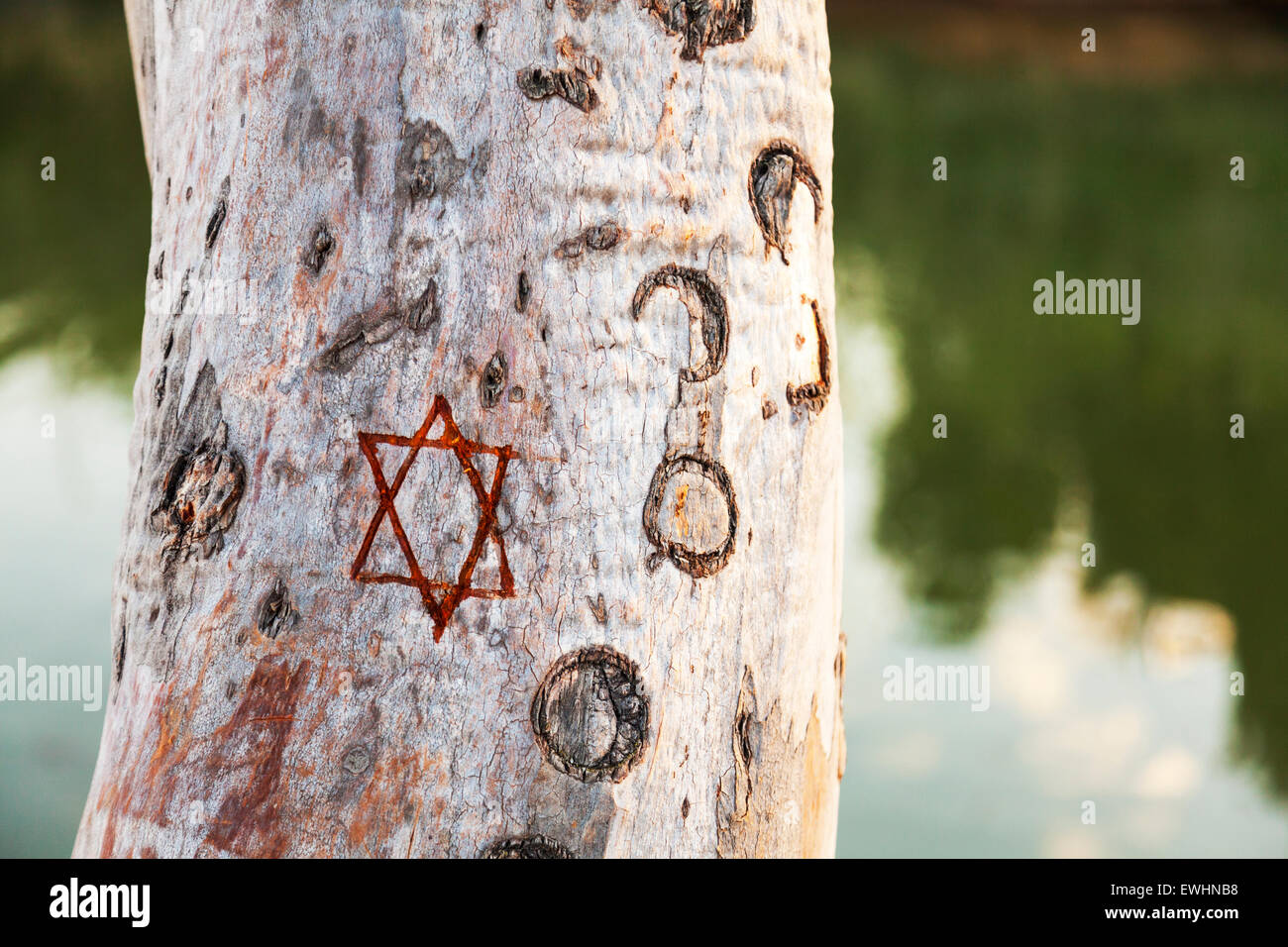 Pentagram star of David carved in to tree trunk symbol emblem meaning Jew Jewish black magic - Stock Image