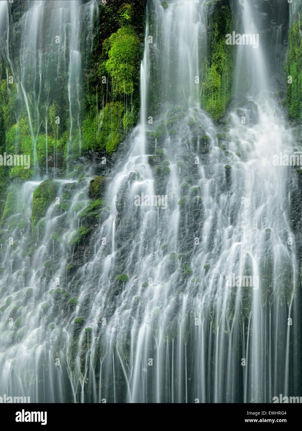 Panther Creek Falls. Washington - Stock Image