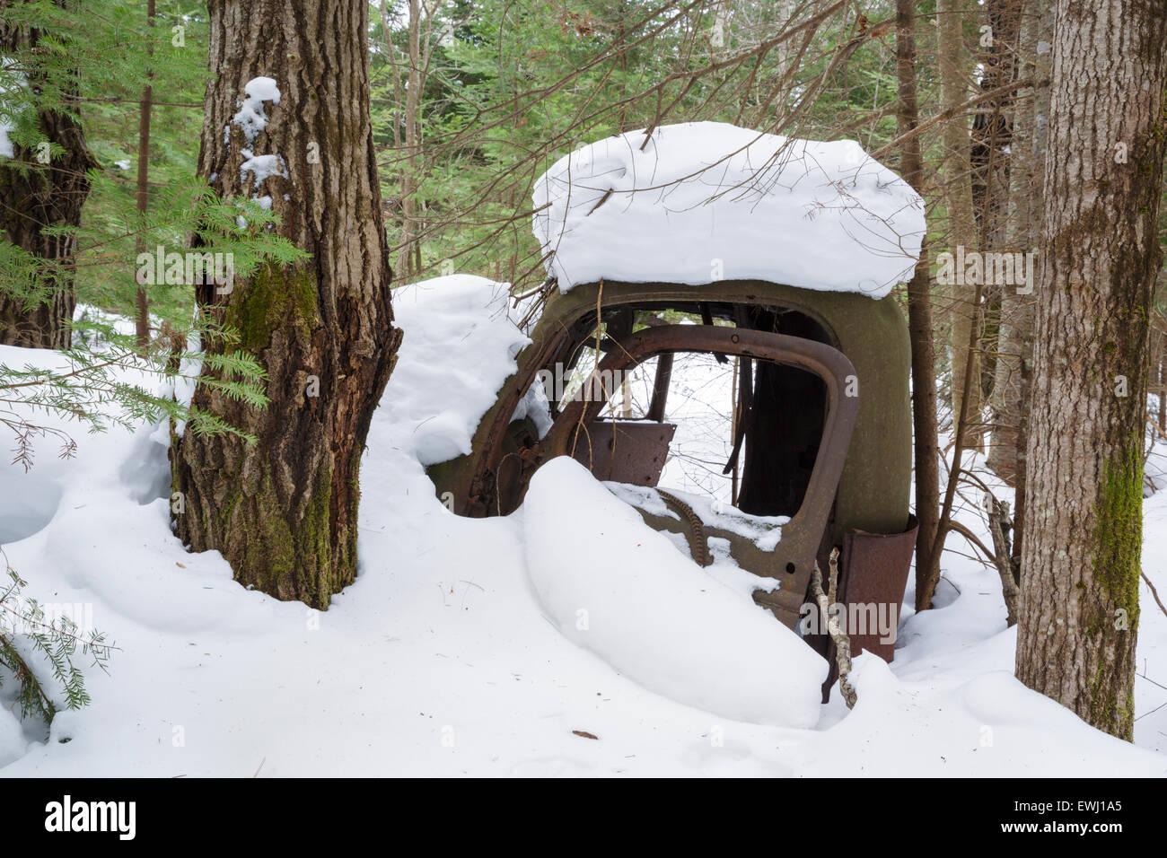 Abandoned truck in forest of Franconia, New Hampshire USA during the winter months. This is possibly a late 1930s - Stock Image