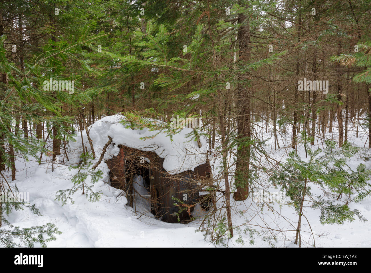 Abandoned Chevrolet in forest of Franconia, New Hampshire USA during the winter months. This is possibly a 1940s - Stock Image
