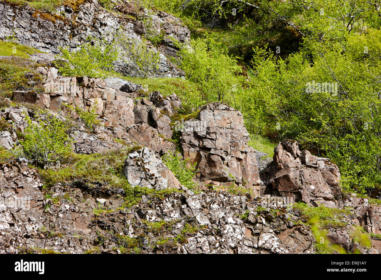 volcanic rock strata and dikes in basalt in hillside Iceland - Stock Image