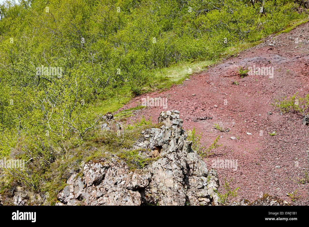 red stratum layer iron oxidisation soil above basalt dike Iceland - Stock Image