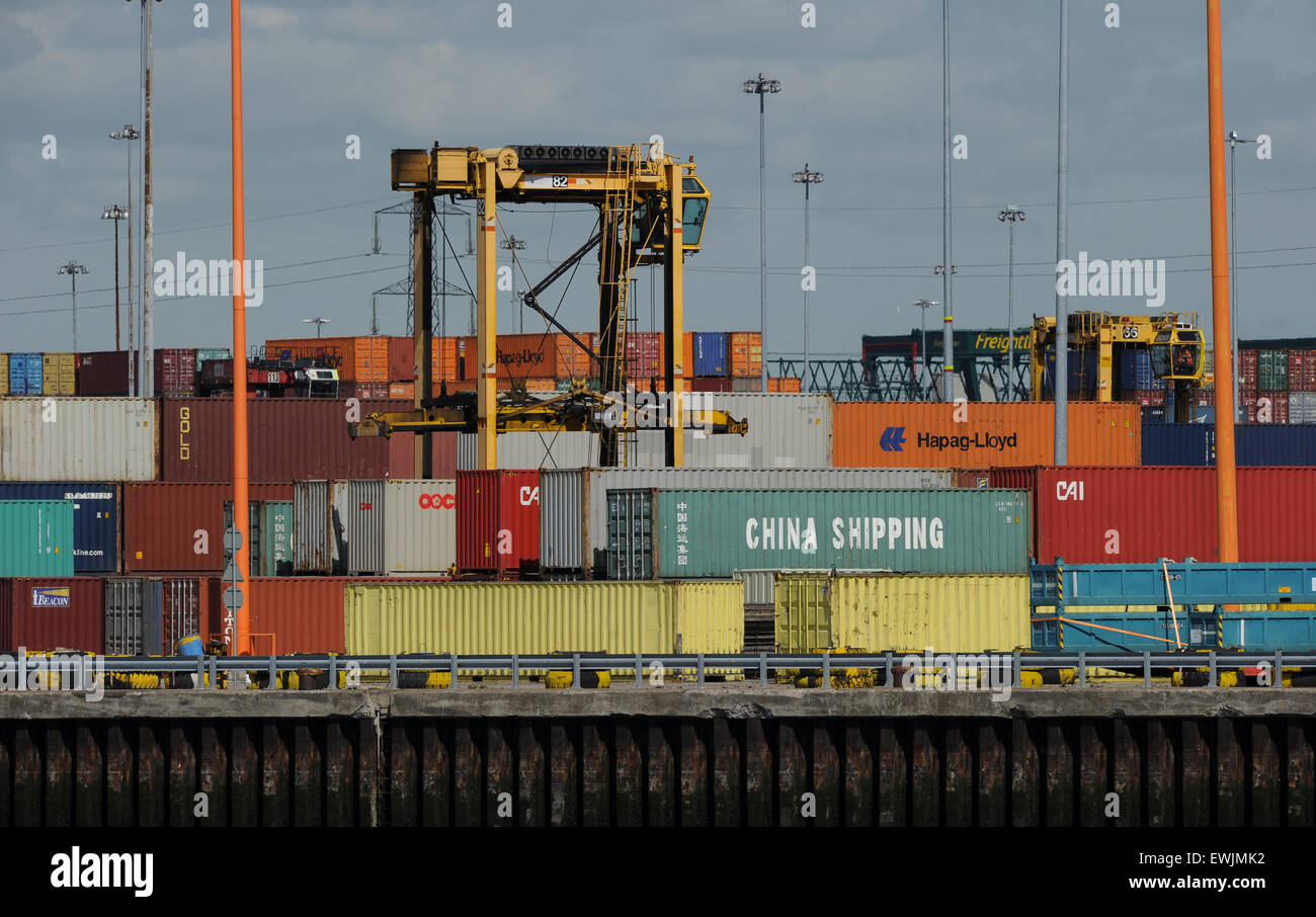 Container off loading at DP world port of Southampton - Stock Image