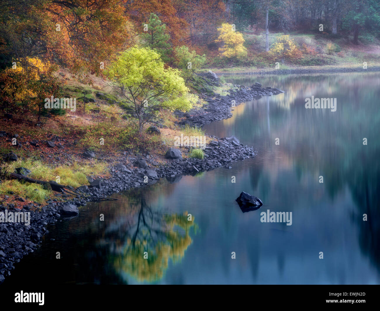 Small lake and fall color near the Colubmia River. Columbia River National Scenic Area, Washington - Stock Image