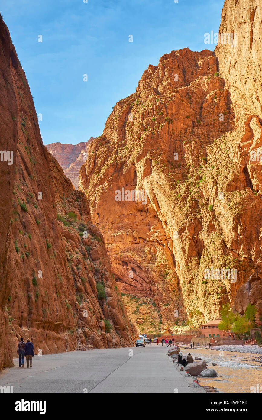 Gorges du Todra, Tinghir, Morocco, Africa - Stock Image