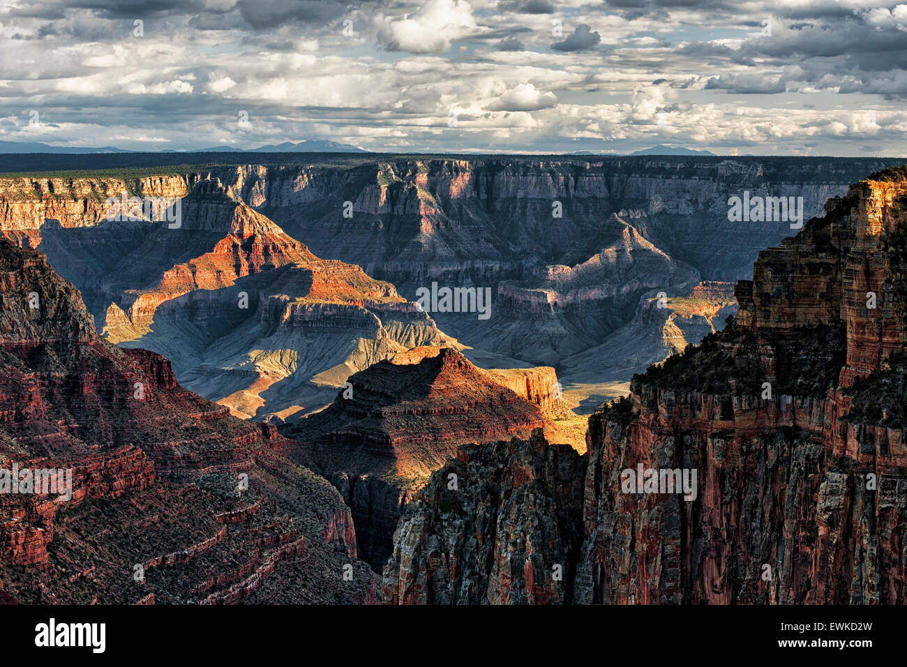 Evening sun breaks as spring storm builds over the North Rim of Arizona's Grand Canyon National Park from Walhalla - Stock Image