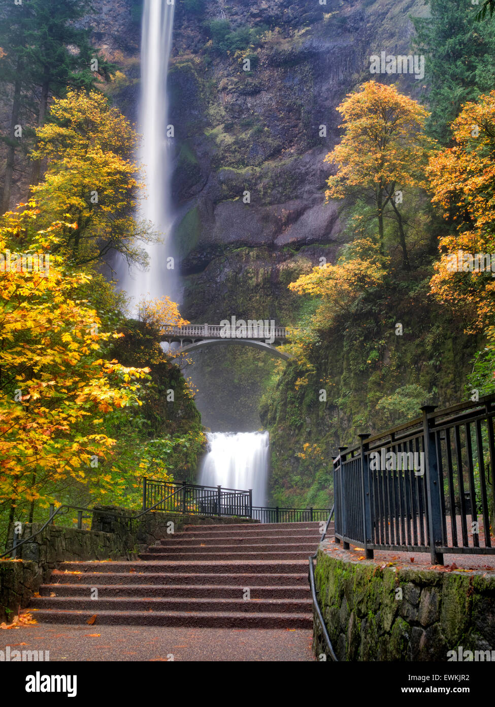 Multnomah Falls with steps and fall color. Columbia River Gorge National Scenic Area, Oregon - Stock Image