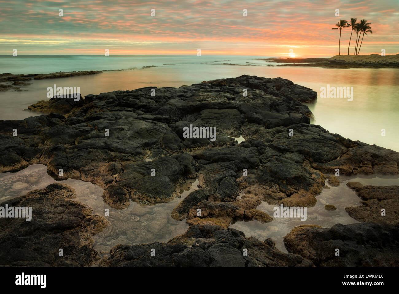 Sunset and palm trees on the Kohala Coast. Hawaii, The Big Island. - Stock Image