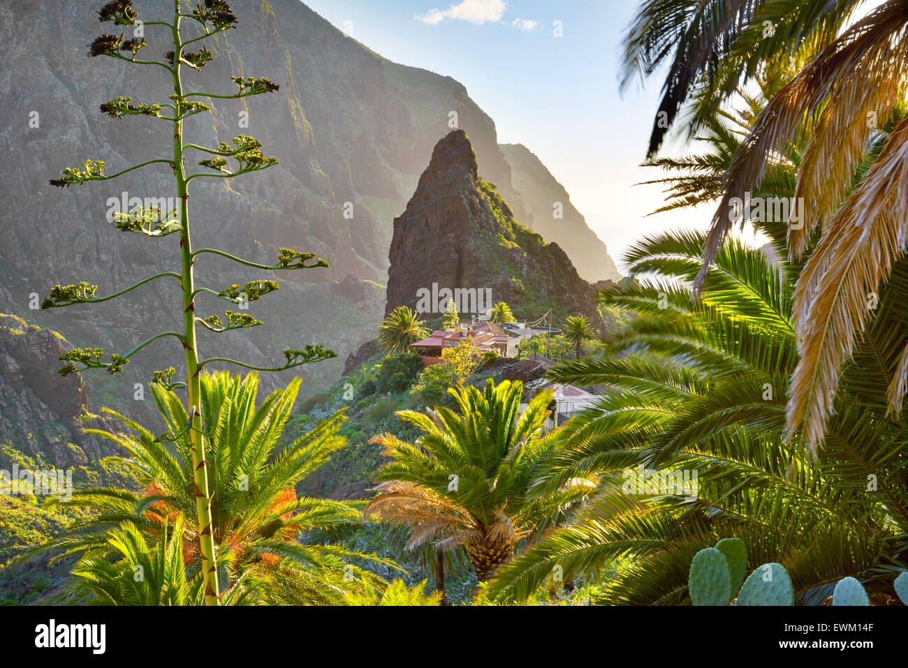 Masca village with its characteristic pinnacle in the center, Tenerife, Canary Islands - Stock Image