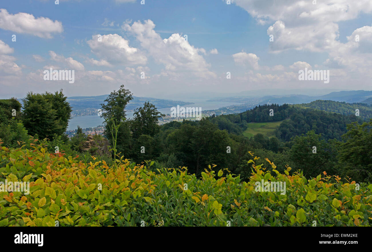 View over the city and lake of Zurich, from Uetliberg mountain - Stock Image