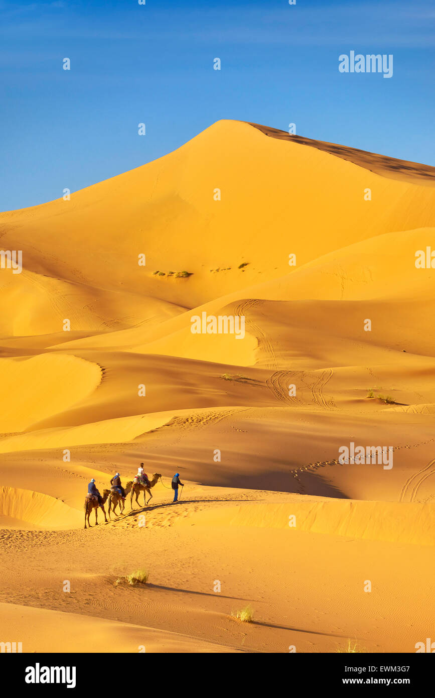 Tourists ride on camels, Erg Chebbi desert near Merzouga, Sahara, Morocco - Stock Image