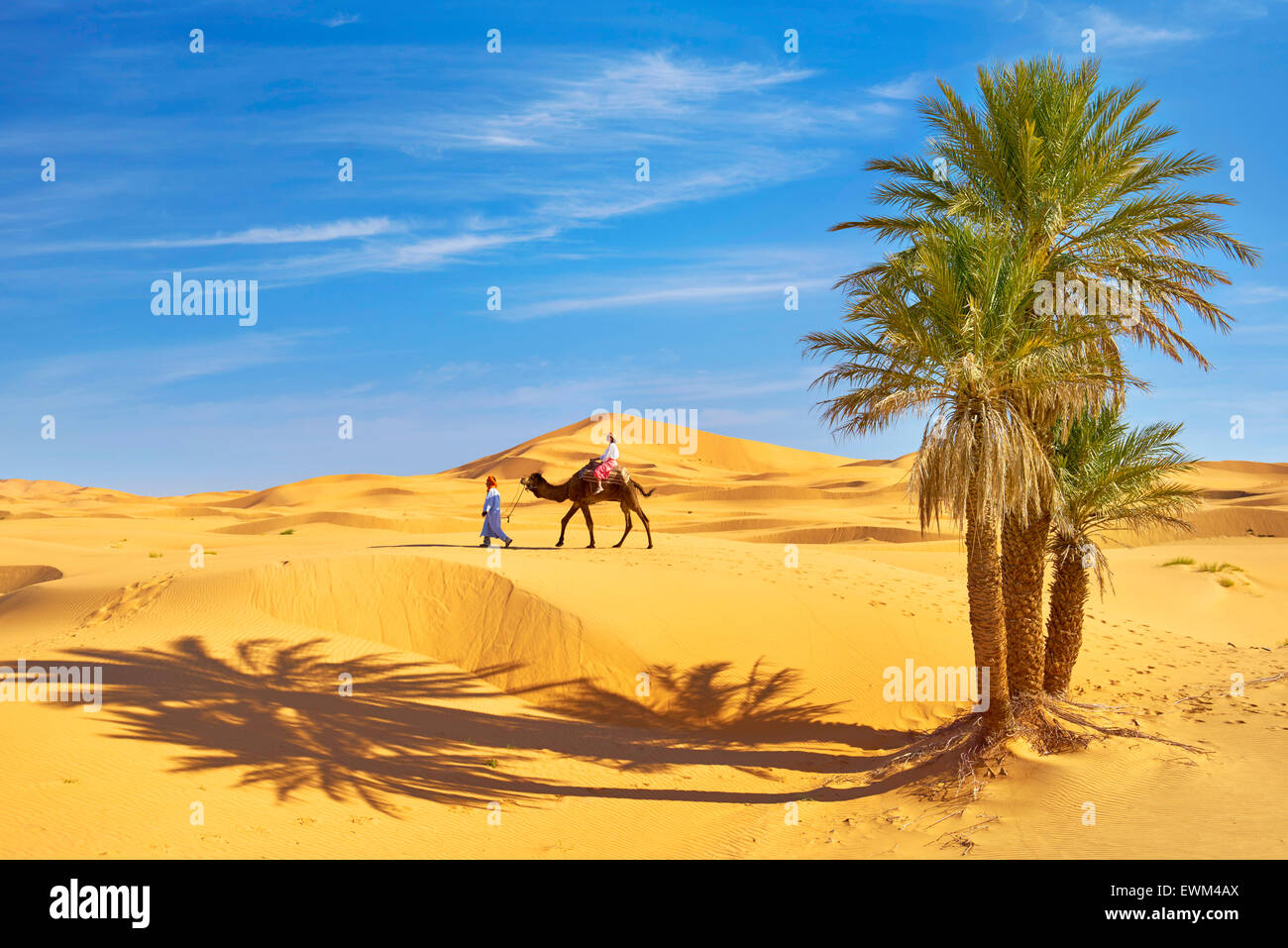 Tourist on camel ride, Erg Chebbi desert near Merzouga, Sahara, Morocco Stock Photo
