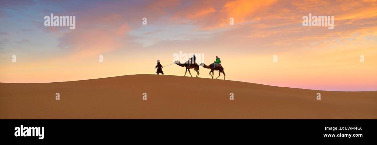 Tourists on camel ride at sunset, Erg Chebbi desert near Merzouga, Sahara, Morocco - Stock Image