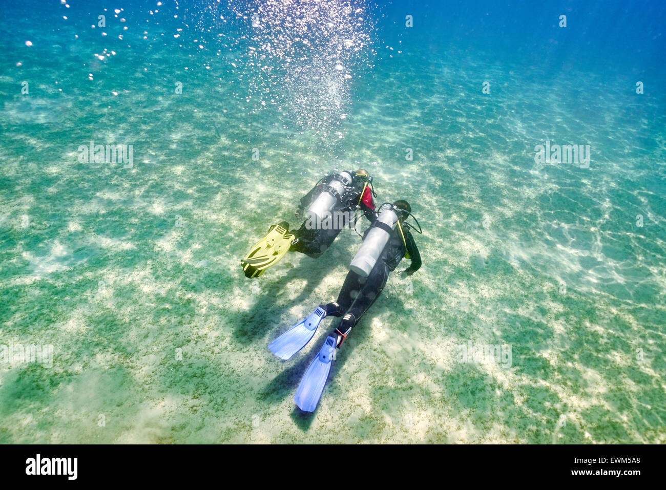 Marsa Alam, Red Sea, Egypt - dive instructor with novice diver, first underwater dive - Stock Image