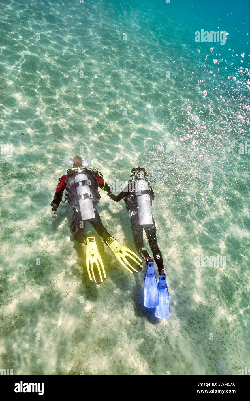 Dive instructor with novice diver, first underwater dive, Marsa Alam, Red Sea, Egypt - Stock Image