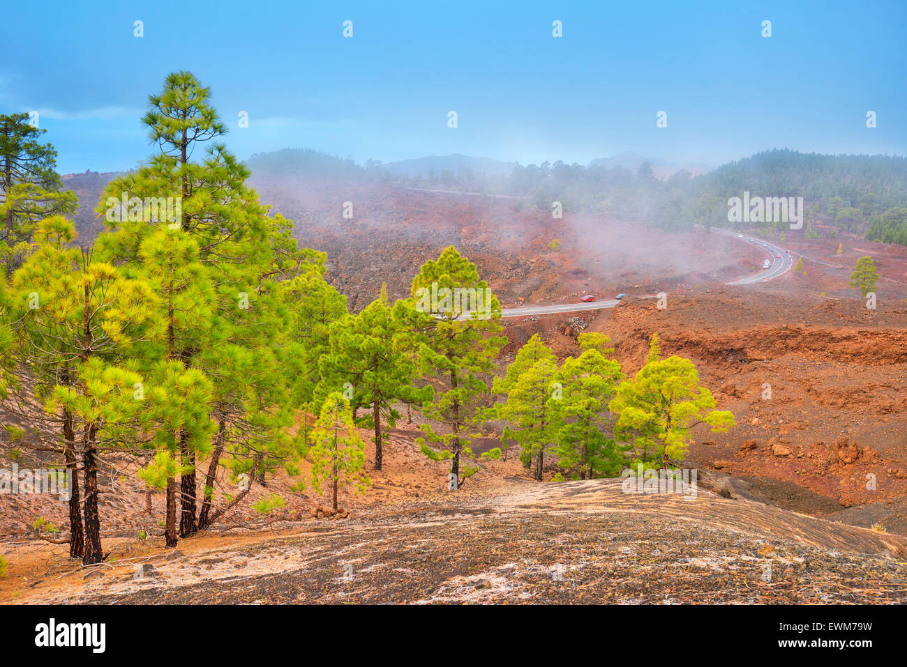 Volcanic landscape, Teide National Park, Tenerife, Canary Islands, Spain - Stock Image