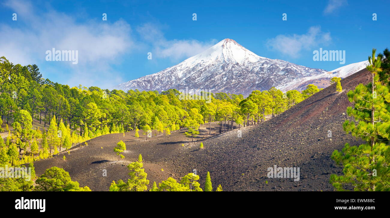 Tenerife - view of Teide Volcano Mount, Canary Islands, Spain - Stock Image