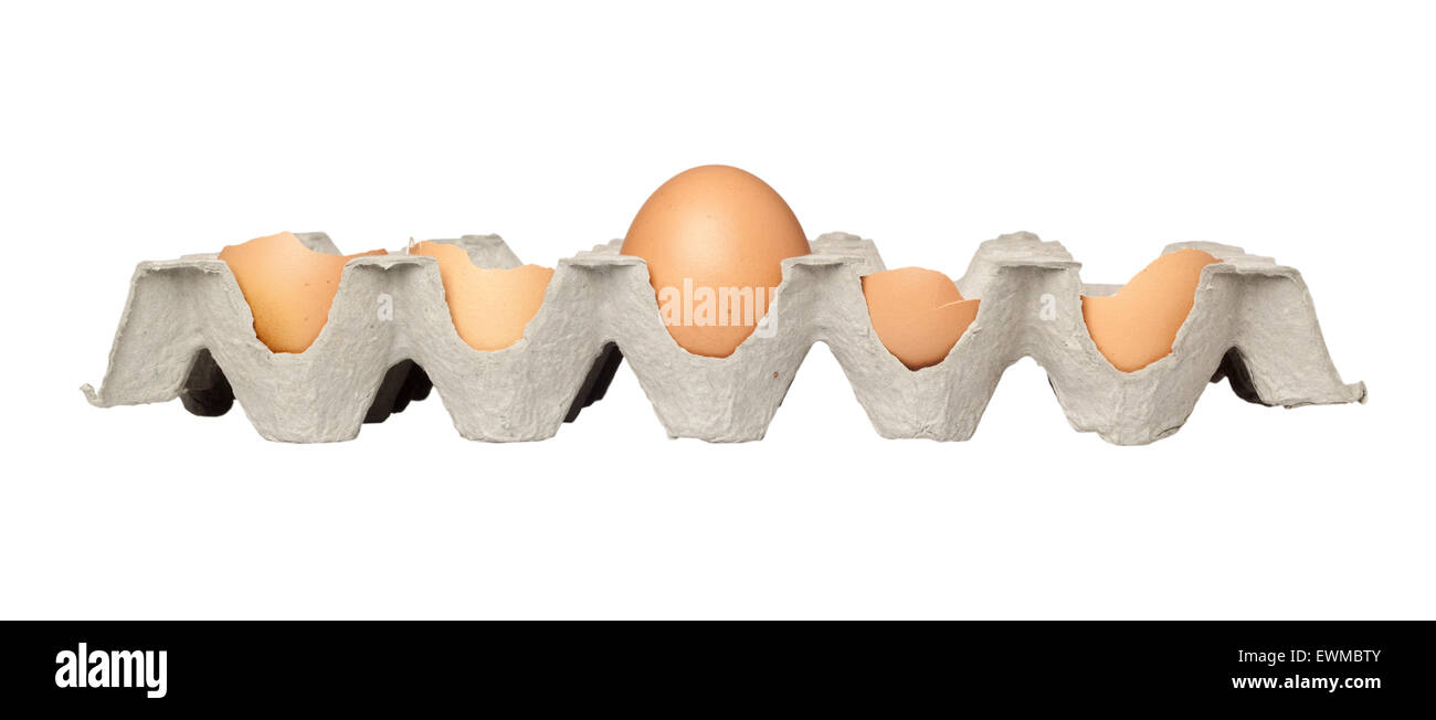 One intact egg among broken eggs on a tray isolated on white background - Stock Image