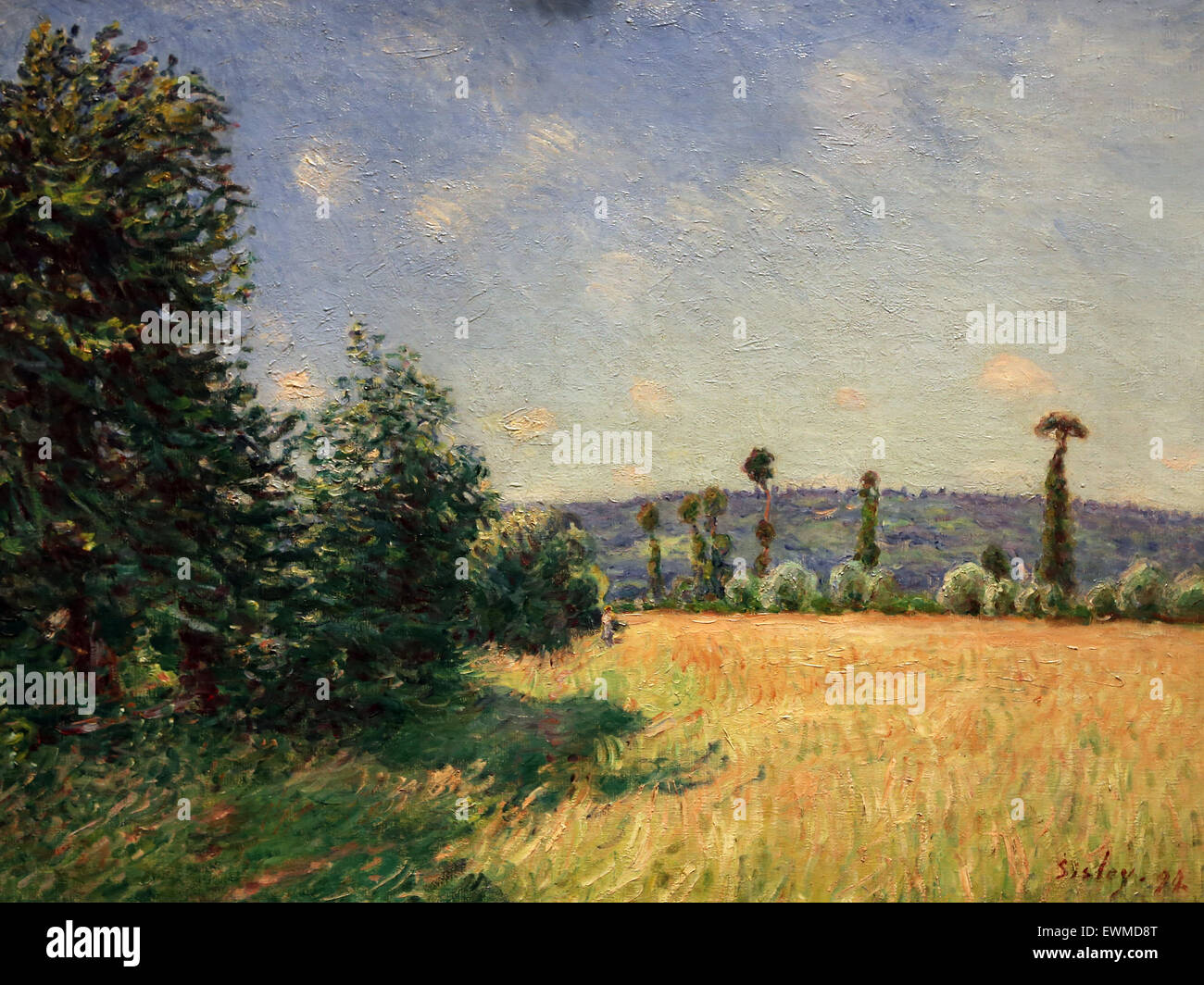 Alfred Sisley (1839-1899). French painter. Sahurs Meadows in Morning sun, 1894. Oil on canvas. Metropolitan Museum - Stock Image