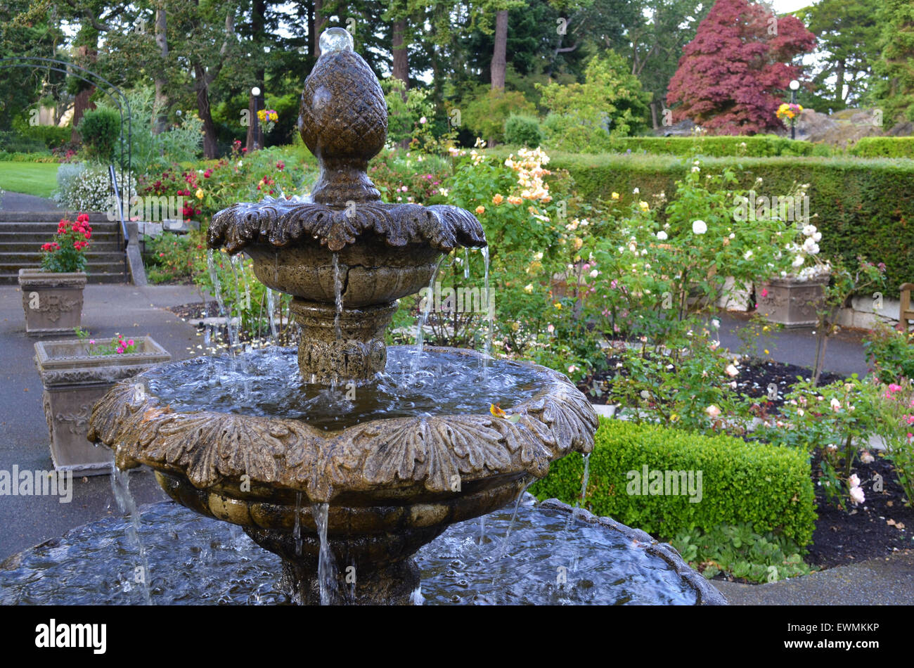 Stone Water Fountain In The Beautiful Classical Rose Garden At Government  House Gardens In Victoria, British Columbia, Canada