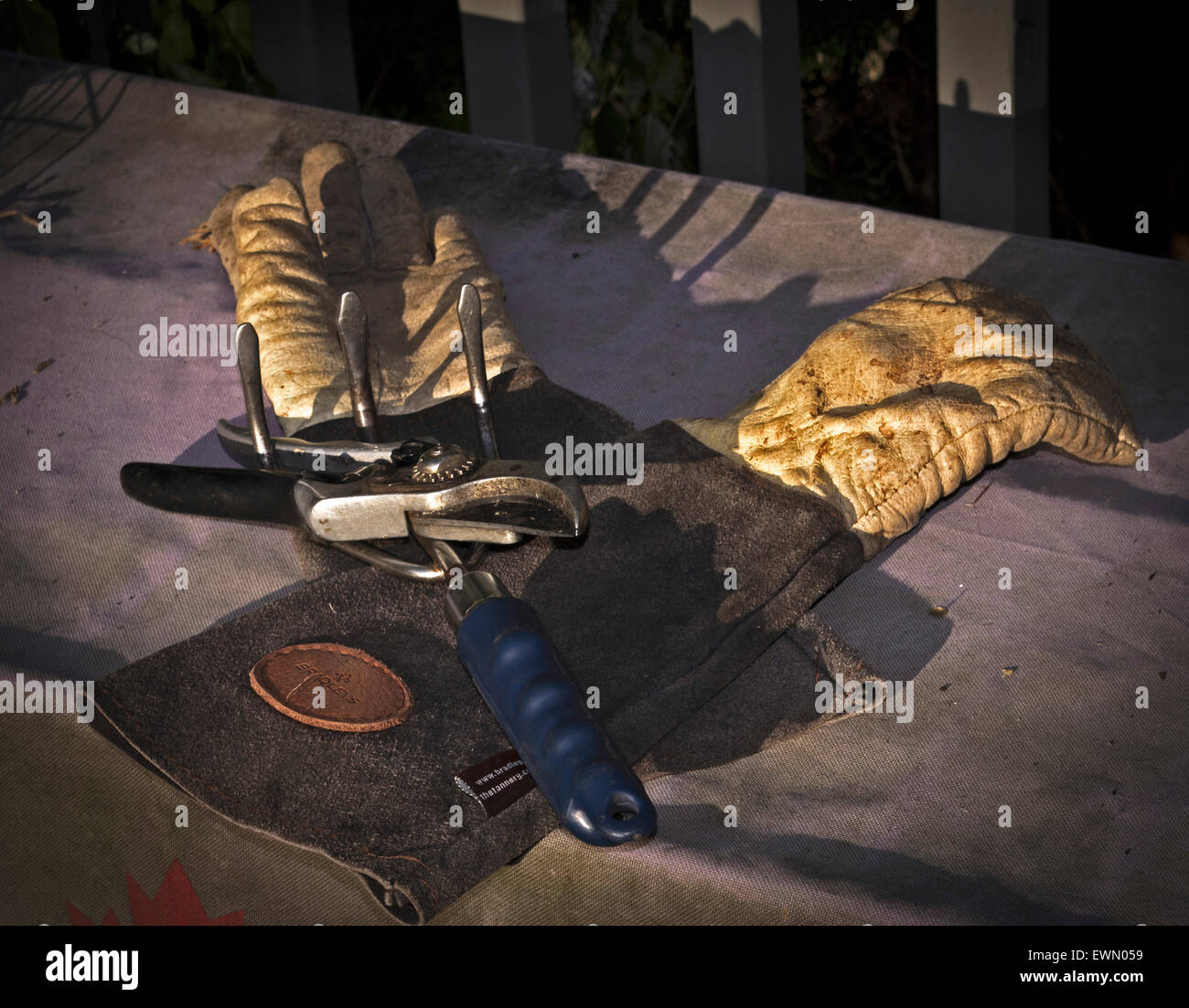 Gardening tools high cuff gloves , cultivator and clippers - Stock Image